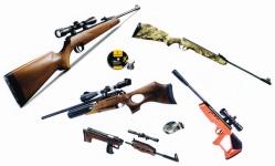 06 - Carabines et Pistolet à Plombs