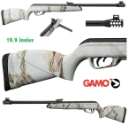 Carabine GAMO  