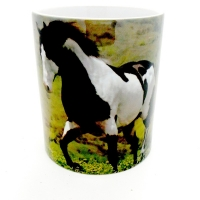 Mug  Cheval  Pinto noir
