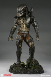 23  Statue  «  PREDATOR Jungle Hunter » 70 cm