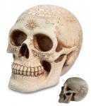 Crâne tête de mort astrologique