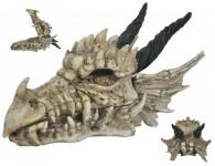 Boite Crane tête de Dragon
