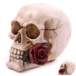 Crâne tête de mort avec  Rose Rouge