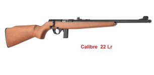 Carabine 22 Lr Mossberg Plinkster  802