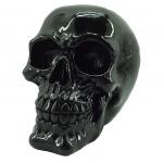 Crâne tête de mort noir compact
