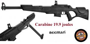 Carabine à plomb BEEMAN   dual Mod 2015S  double conon