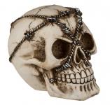 Crâne tête de mort barbele